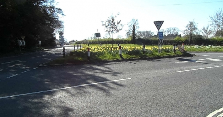 daffodils at entrance to village